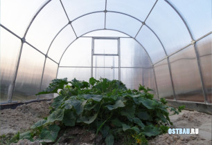 greenhouses-mounting-012