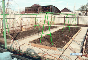 metal-grape-trellises-002